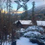 morning star winter 2